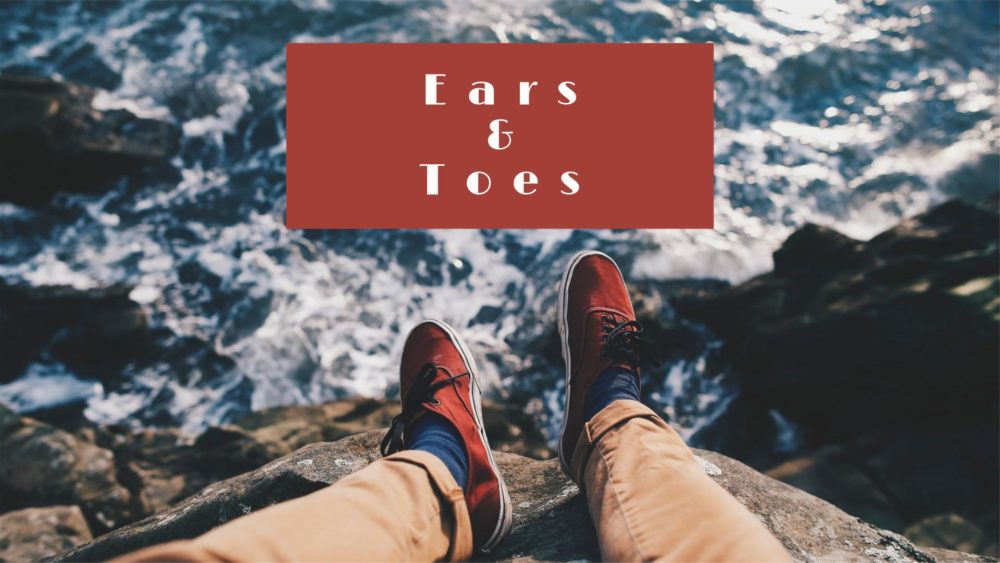 Ears & Toes Image